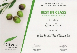 2019-Best-in-Class-Boutique