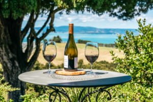 Wine and glasses at Woodside Bay